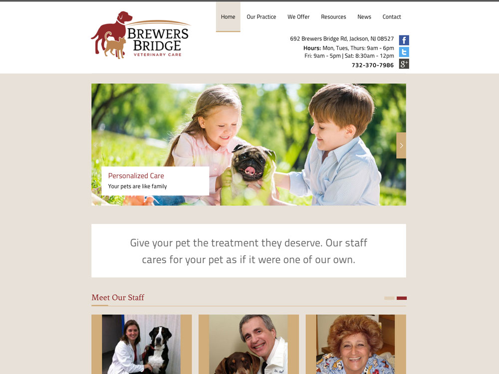 Veterinary Web Design