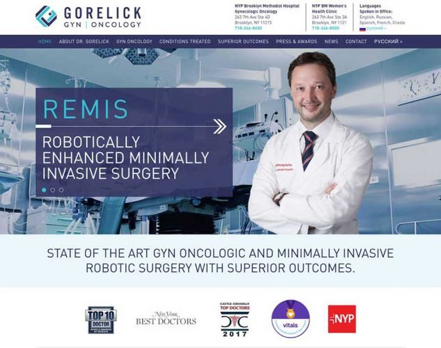 gorelick website design.
